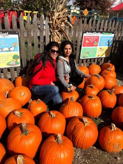 UIC international students select pumpkins at Seigel's Cottonwood Farm.