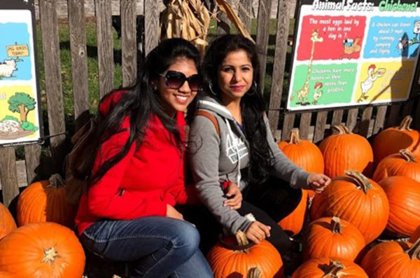 UIC international students select pumpkins at Seigel's Cottonwood Farm.